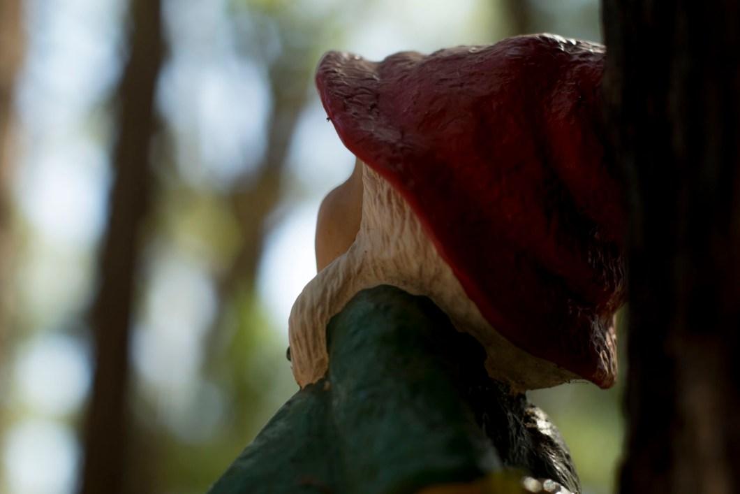 gnome (1 of 1)-12