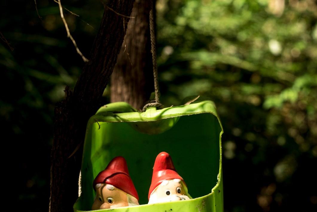 gnome (1 of 1)-18