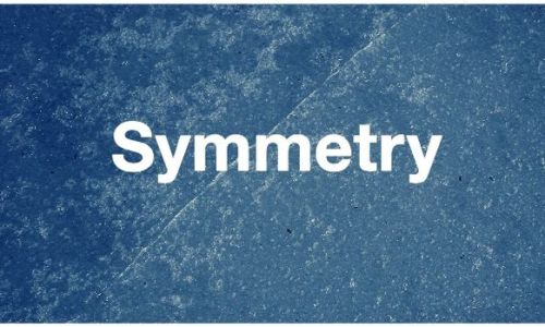 乳房、睪丸、腎臟挖掘對稱感的藝術短片 - Symmetry
