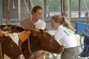 Judge and 4-H'er at the oxen showing at the Skowhegan State Fair
