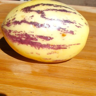 New Flora: What the heck is a Pepino Melon?