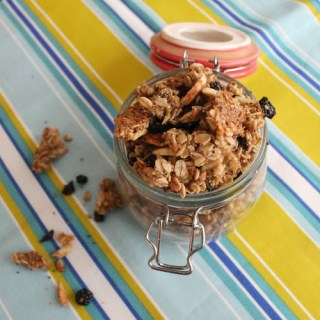 Lots o' Dried Blueberries Granola