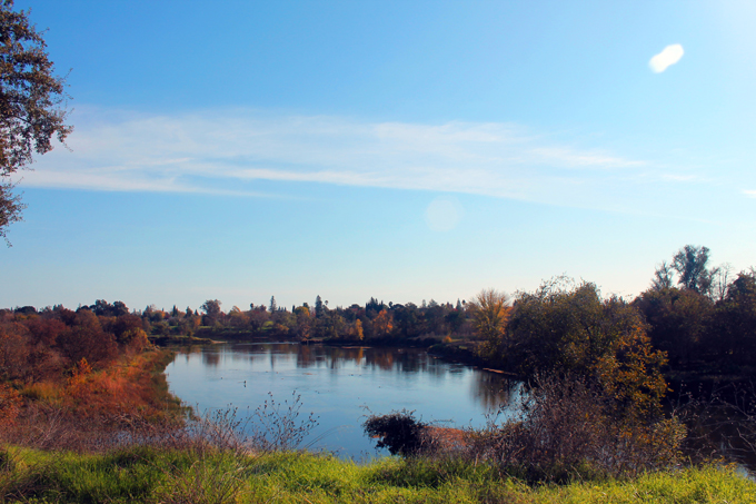 American River Bike Trail