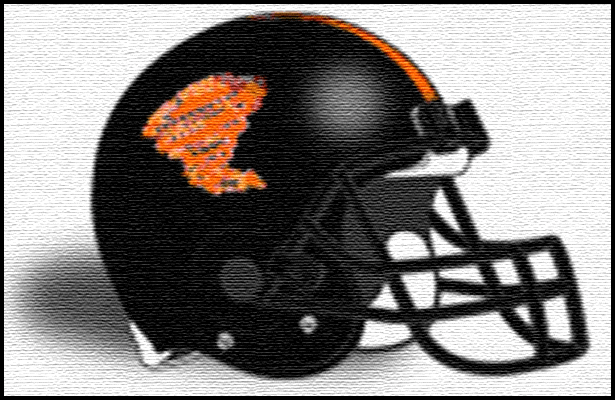 Booker T. Washington Tornadoes 2013 Football Schedule