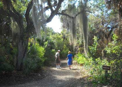 Trail on Cayo Costa Island, Florida