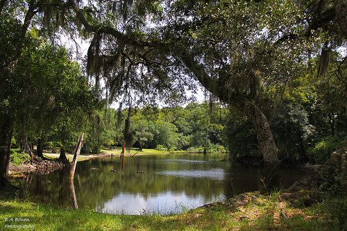 The Withlacoochee River Flows Through Sumter County Florida