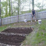 Organic Terrace Gardening