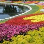 Disney-Inspired Gardening