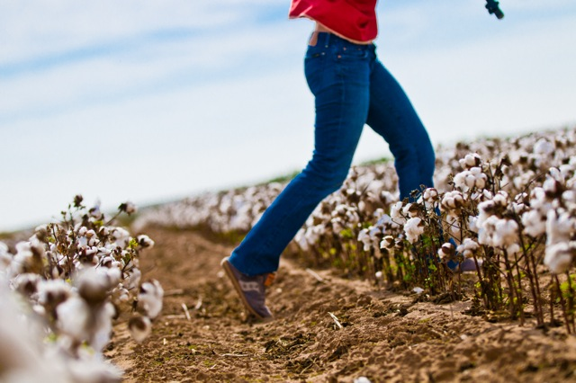 Woman running through field of organic cotton in shirt and blue jeans.