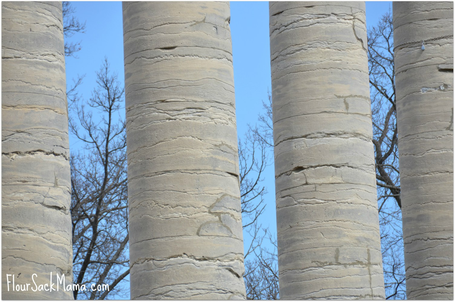closeup of columns at University of Missouri