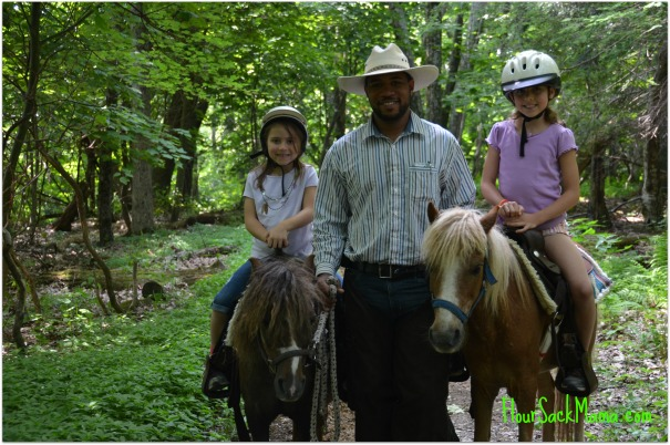 Riding Ponies Stable Manager
