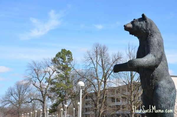 Bear statue on Missouri State campus