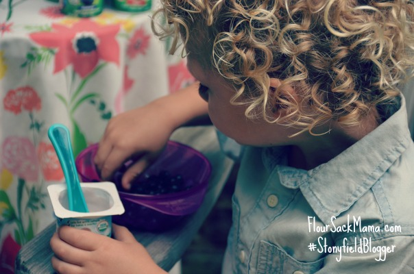 Stonyfield YoToddler plus blueberries