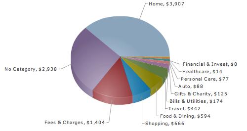 Mint Pie Chart