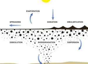 physics of oil spills