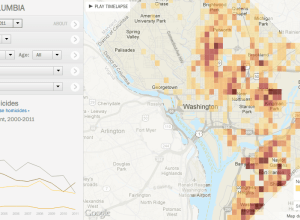 Washington homicide map