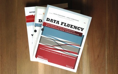 Data Fluency by Zach and Chris Gemignani