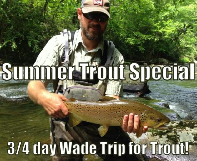 Fly fishing guides great smoky mountains gatlinburg and for Fishing in pigeon forge tn