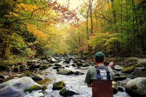 Fly fishing the Great Smoky Mountains National Park, Fly Fishing the Smokies, Fall Fly Fishing,