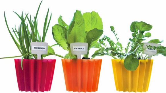 follow-the-colours-mini-horta-vaso