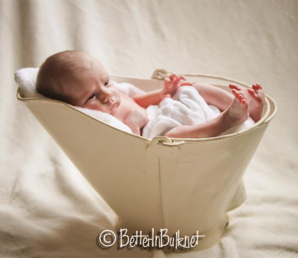 Newborn in a milk bucket
