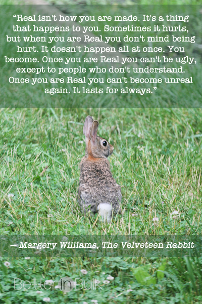 velveteen rabbit quote