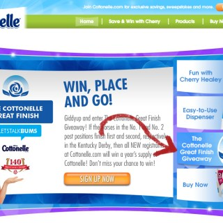 The Cottonelle Great Finish Sweepstakes #KentuckyDerby