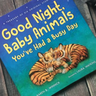 How to Get the Most Out of Children's Books {Good Night, Baby Animals, You've Had a Busy Day}