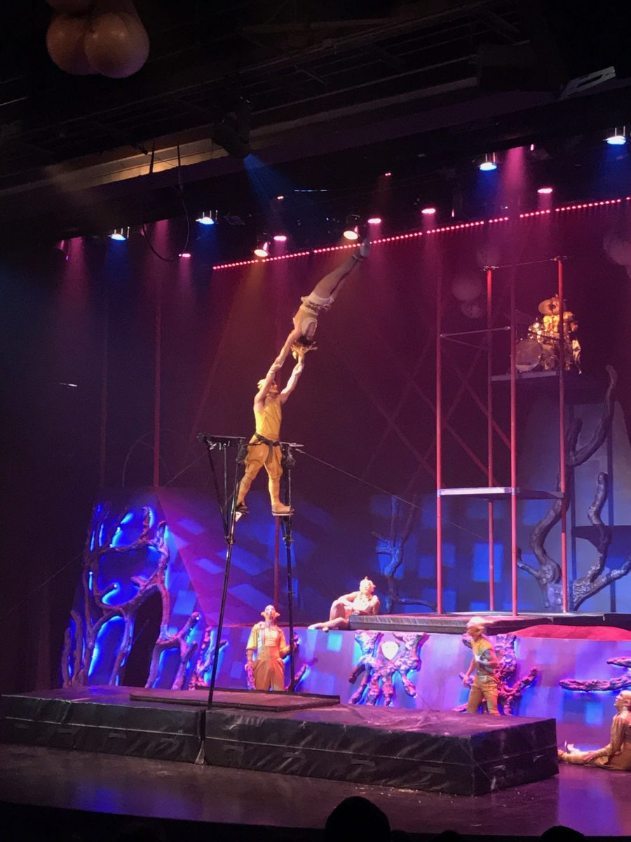 Origins: A Cirque  Experience at Kings Dominion