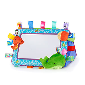 taggies mirror
