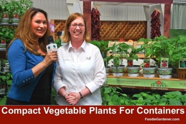 Compact Vegetable Plants for Growing in Containers