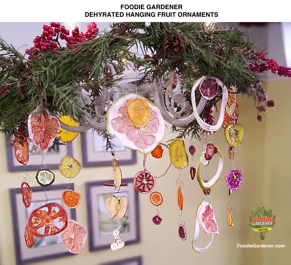 DIY Dried Fruit Ornaments: Use A Dehydrator To Dry Fruit