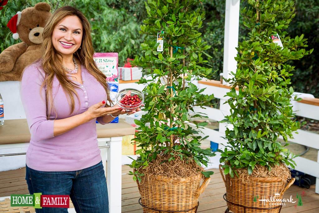 Miracle Fruit Trees: Berries Make Sour Foods Taste Sweet!