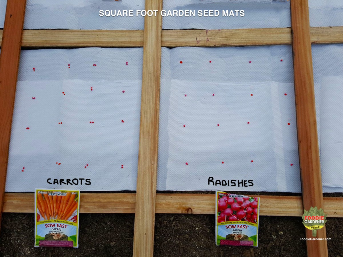DIY VEGETABLE SEED MATS FOR  SQUARE FOOT GARDENS