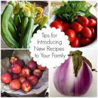 Tips for Introducing New Recipes to Your Family: Guest Post on Eating Rules