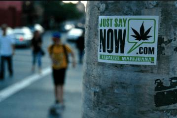 Marijuana, cannabis, dagga