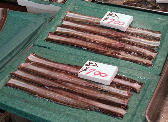 Picture perfect eel fillets at Tokyo's Tsukiji Fish Market