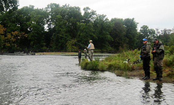 Fishing the Salmon River - Douglaston Salmon Run