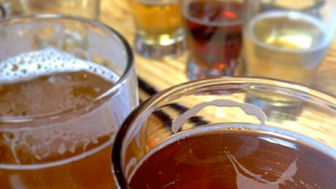 12 Things You Didn't Know About Hard Cider