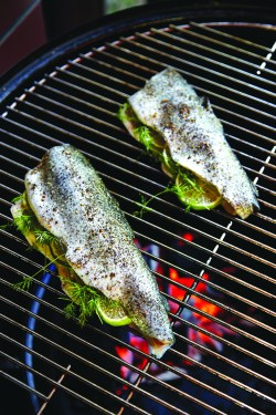 Great Ever Easy Grilled Trout Ever Easy Grilled Trout Faith Food Schmooze Grilled Trout Recipes Lemon Butter Grilled Trout Recipes Foil
