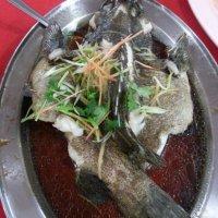 Staple diet of KK locals@Gaya Seafood restaurant, Kota Kinabalu