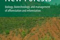 Restoring forests: What constitutes success in the twenty-first century?