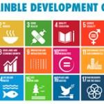 SDGs_survey