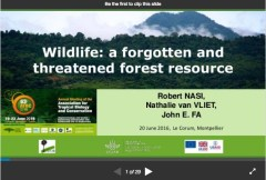 Wildlife: a forgotten and threatened resource