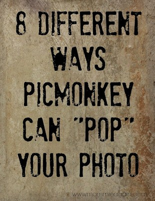 Photo Editing with PicMonkey for Free!!