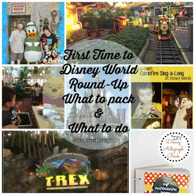First Time to Disney World Round-Up - What to Pack & What to Do!