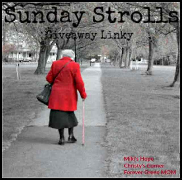 Sunday Stroll Giveaway Link Up - 918/16