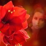 Fotoefectos Fondos con Flores.