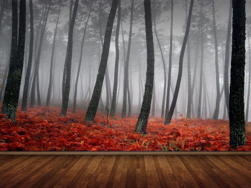 Fotomural para dormitorio bosque rojo de niebla for Dormitorio infantil bosque