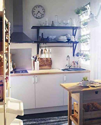 taman di dapur